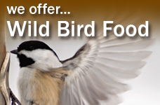 We offer Wild Bird Food - small ad