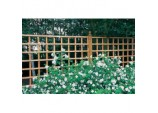 Heavy Duty Trellis - 6' x 1'