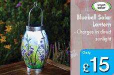 Bluebell Solar Lantern  – Now Only £15.00