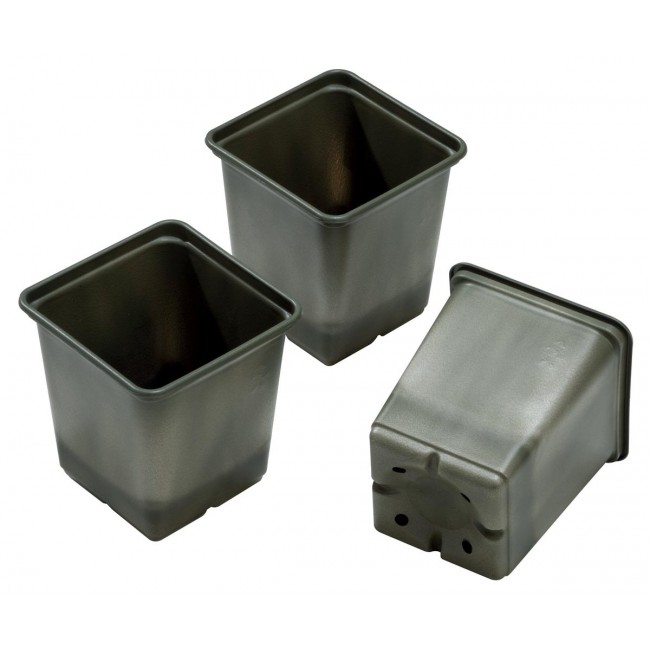 Bio-Based Square Growing Pots - Pack of 5 – Now Only £1.50