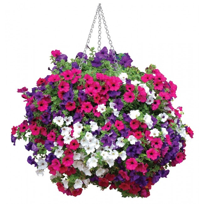 Universal Hanging Basket Liners - Pack of 2 – Now Only £3.00